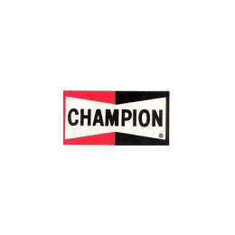 37.champion